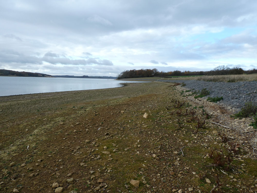Photo of Rutland Water shoreline